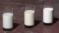 Süt Sektörü İçin Muhasebe Ağı