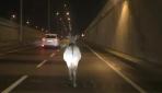 Kara yoluna çıkan eşeği 2 kilometre takip etti