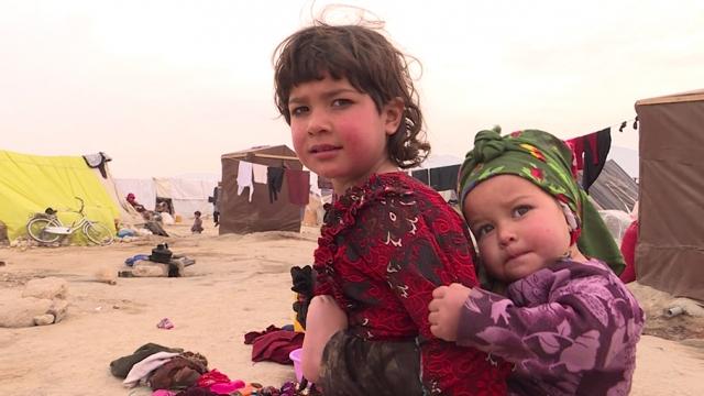 Bir yanda savaş diğer yanda kuraklık Afgan halkını göçe zorluyor