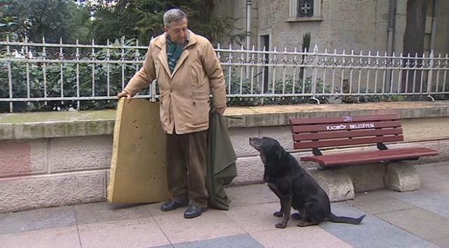 Simitçiyle sokak köpeği Zeytin'in dostluğu