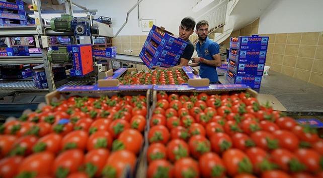 Egenin tarım ihracatı 5 milyar doları geçti