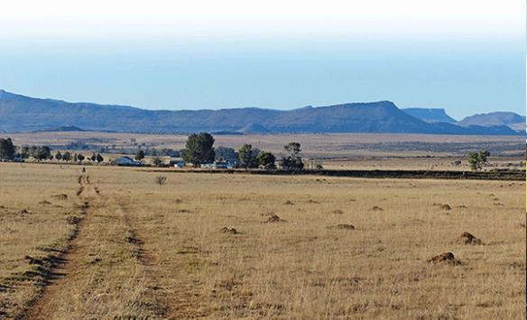 Güney Afrikada toprak reformu tartışılıyor