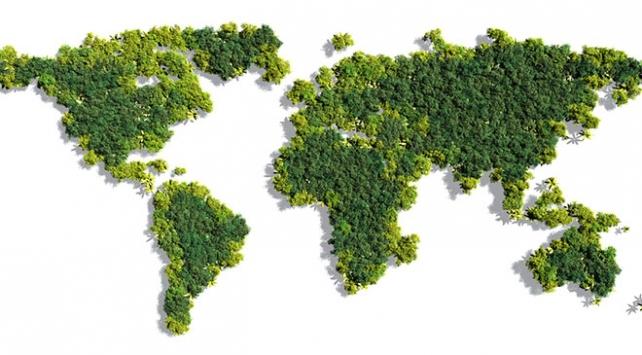 Dünya genelinde yeşil alanlar arttı