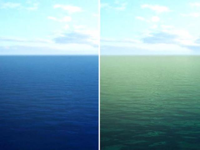 Okyanuslar 21. yüzyılın sonuna kadar renk değiştirecek