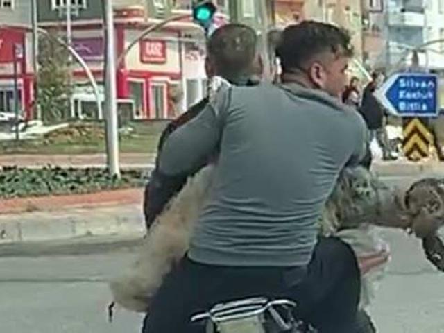 Batman'da 2 kişi motosiklette koyunla yolculuk yaptı