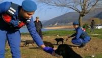 Mehmetçik görev yaptığı yerlerdeki sokak hayvanlarını besliyor