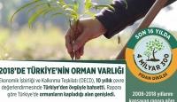2018'de Türkiye'nin Orman Varlığı