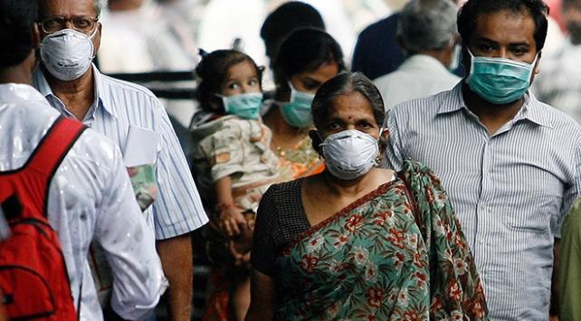 Hindistan'da domuz gribinden ölenlerin sayısı 377'ye çıktı