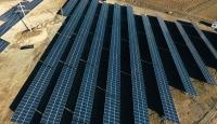 Tarlasına güneş enerjisi santrali kurdu