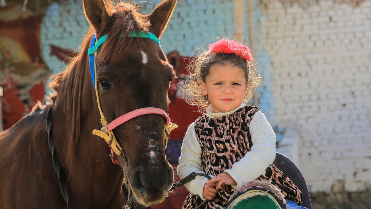 Mısırda at yetiştiriciliğin merkezi: Demo köyü