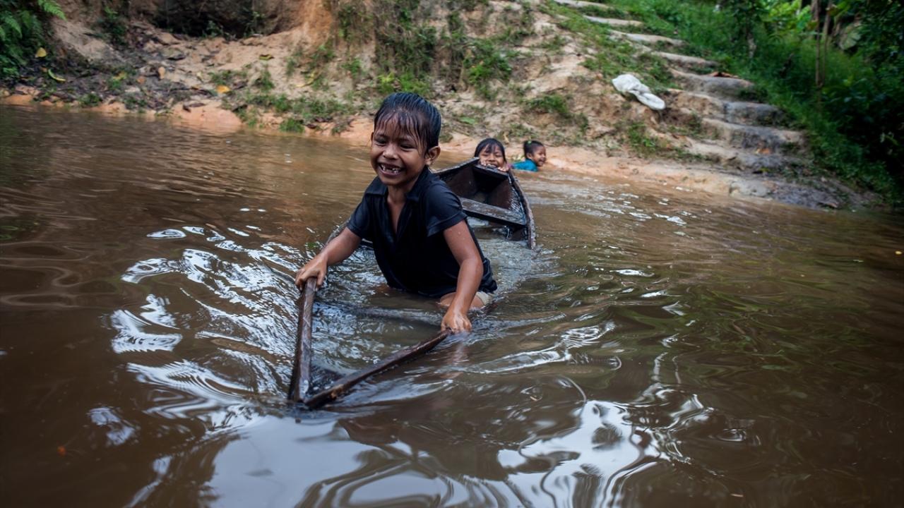Kolombiya Leticiadaki Amazon Havzası