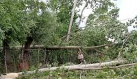 Ardahan'da fırtına, hayatı olumsuz etkiledi