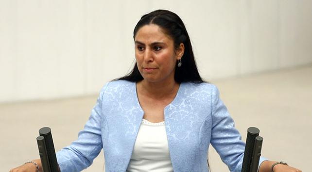 HDP Şanlıurfa Milletvekili Sürücüye hapis cezası