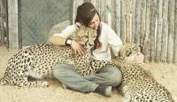 Vahşi hayvanları koruma görevlisi Lisa ile çitalar arasındaki dostluk