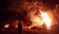 İznik Gölü yakınındaki sazlık alanda yangın