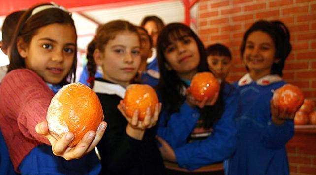 Beslenme okuryazarlığı okulda başlayacak