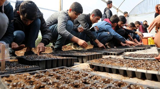 """Öğrenciler """"ata tohumları""""nı toprakla buluşturdu"""