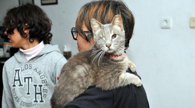 Kazandığı parayı engelli sokak hayvanları için harcıyor