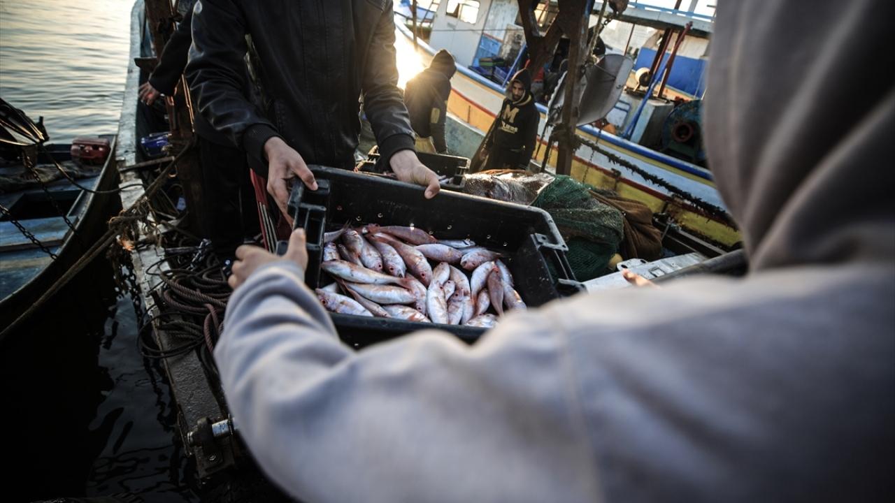 İsrailin, Gazzede balık avlama mesafesini artırması