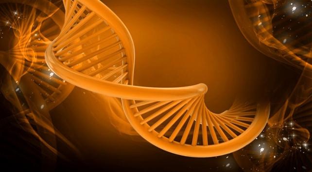 Brezilyada ikiz kardeşlerin babalık davası: DNAları krizi çözemedi
