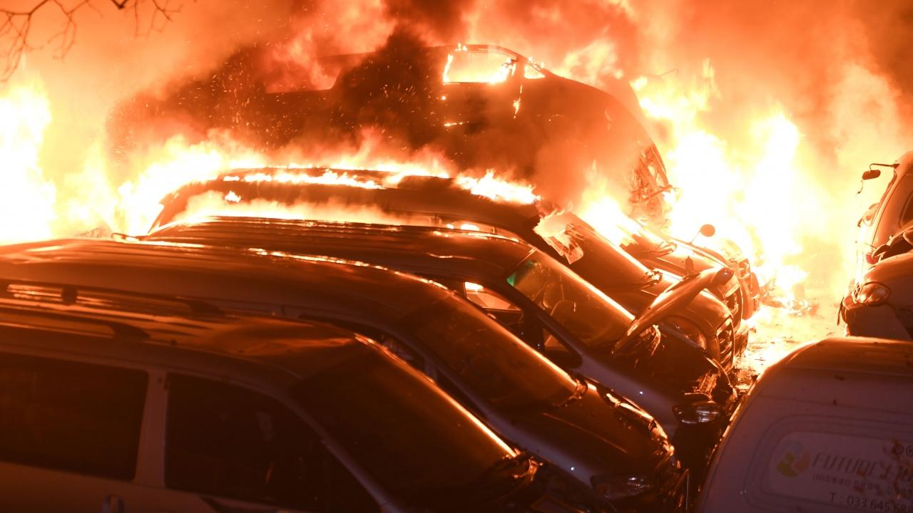 Güney Kore orman yangınıyla boğuşuyor: 250 hektar alan kül oldu