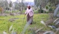 Milas'ın en yaşlı çiftçisi Hanife nine