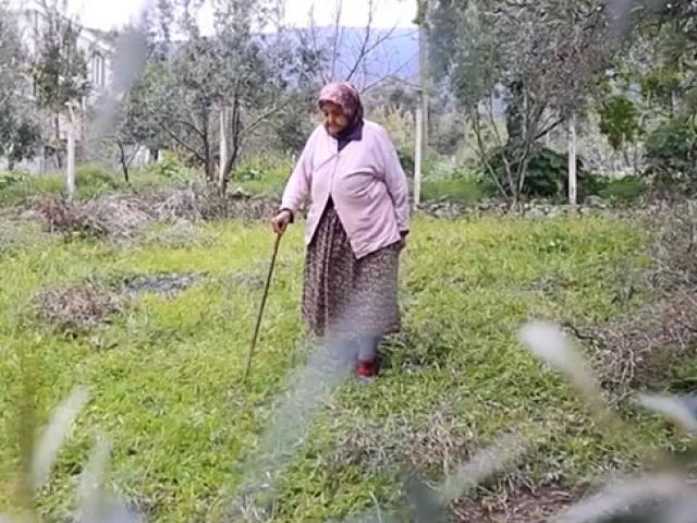 Milasın en yaşlı çiftçisi Hanife nine