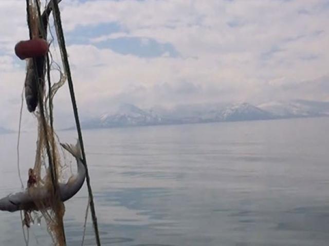 Van Gölüne tekneyle açılan balıkçılar inci kefali avlıyor