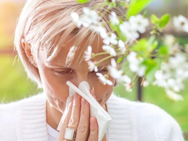 Bahar alerjisine yeni önlem: Polen haritası