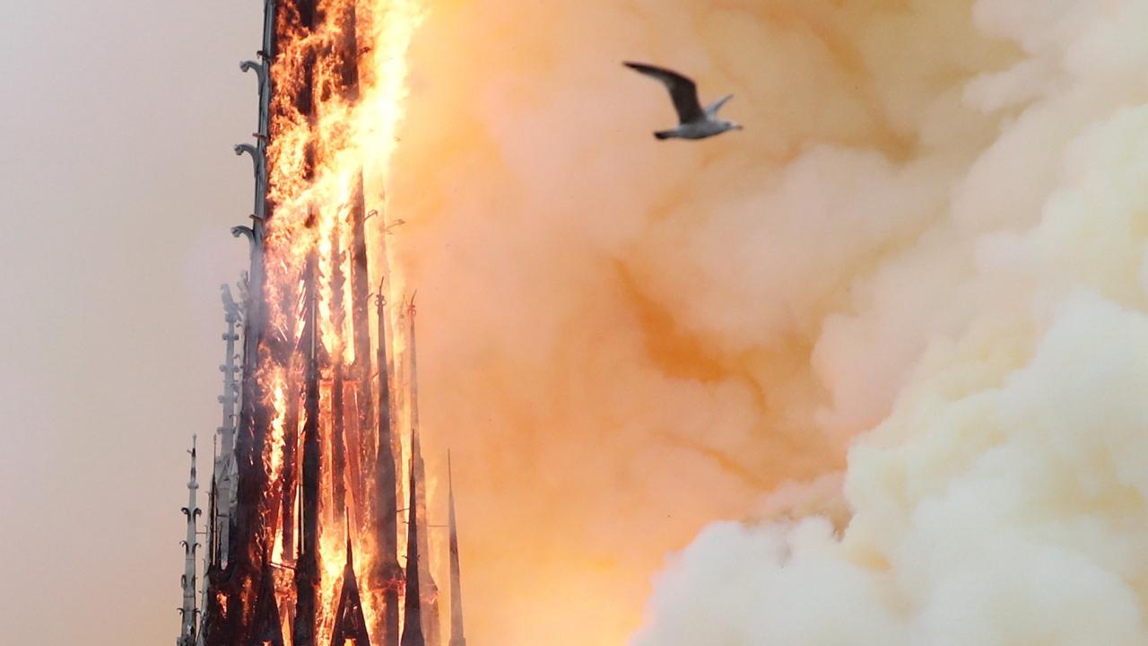 Tarihi Notre Dame Katedralinde yangın