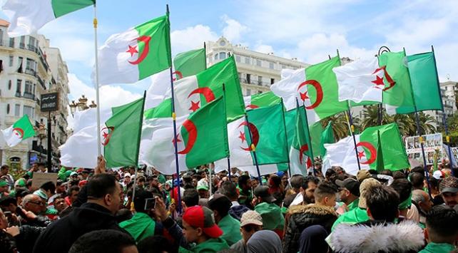 Cezayirde Anayasa Konseyi Başkanı istifa etti