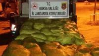 25 ton kaçak midye ele geçirildi