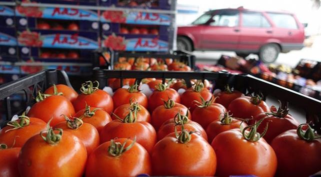 Egeden Rusyaya ihracatta yüzde 111lik artış
