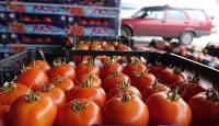 Ege'den Rusya'ya ihracatta yüzde 111'lik artış