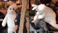 'Paskalya tavşanı' kadına şiddete seyirci kalmadı