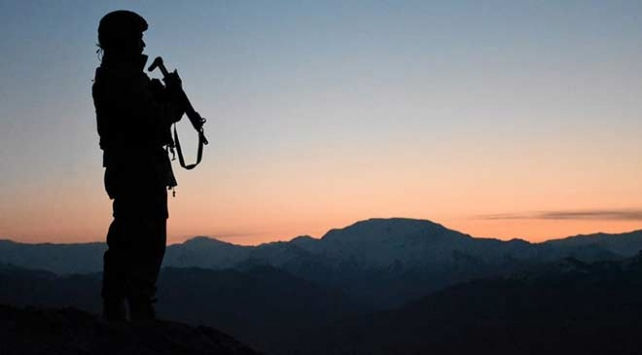 Amanos Dağları kırsalında 5 terörist etkisiz hale getirildi