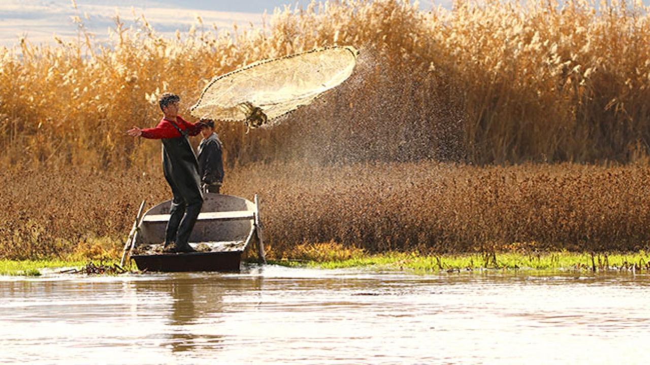 Bendimahi Çayı'nda balıkçılık