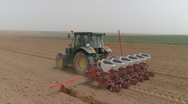 Yerli ve milli tohumlar toprakla buluşuyor