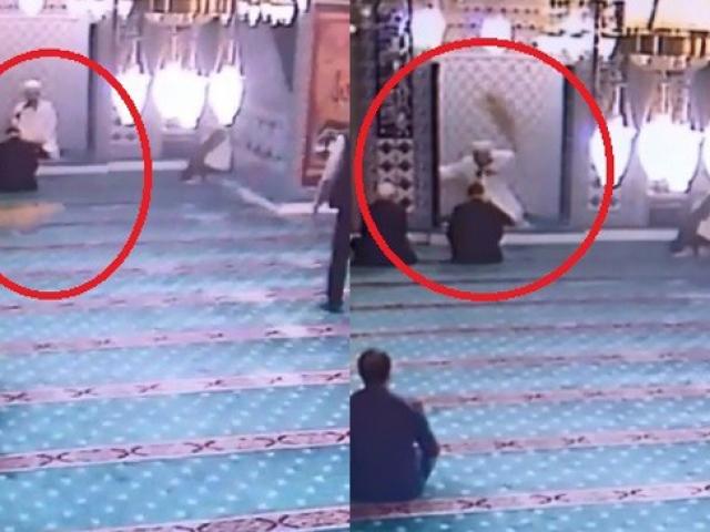 Camiye giren kedi cemaati seferber etti