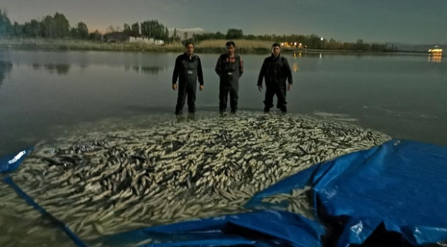 Vanda kaçak avlanılan 3 ton balık ele geçirildi
