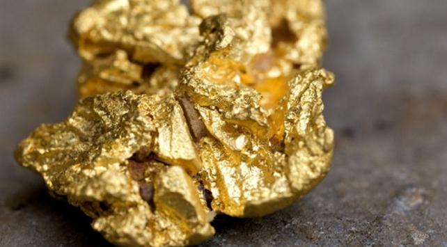 Avustralyalı amatör, dedektörle 1,4 kilogram altın buldu