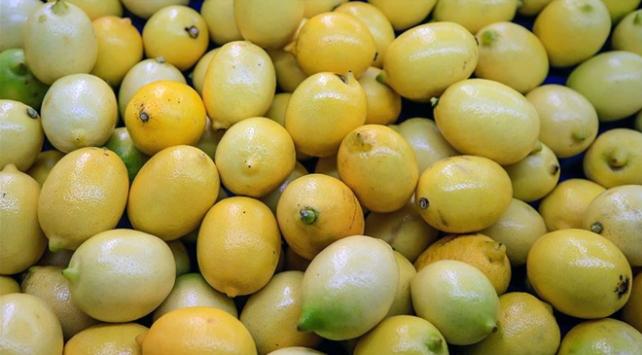 Türkiyenin limon ihracatı 564 bin tona yaklaştı