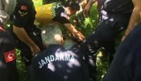 Ordu'da kaybolan yaşlı adam 8 gün sonra sağ bulundu