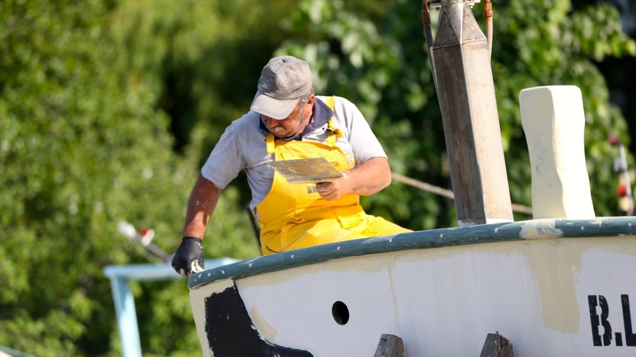 Kıyı balıkçıları rotalarını lüfer ve çinekopa çevirdi