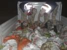 Van'da kaçak avlanılan 5,5 ton balık ele geçirildi