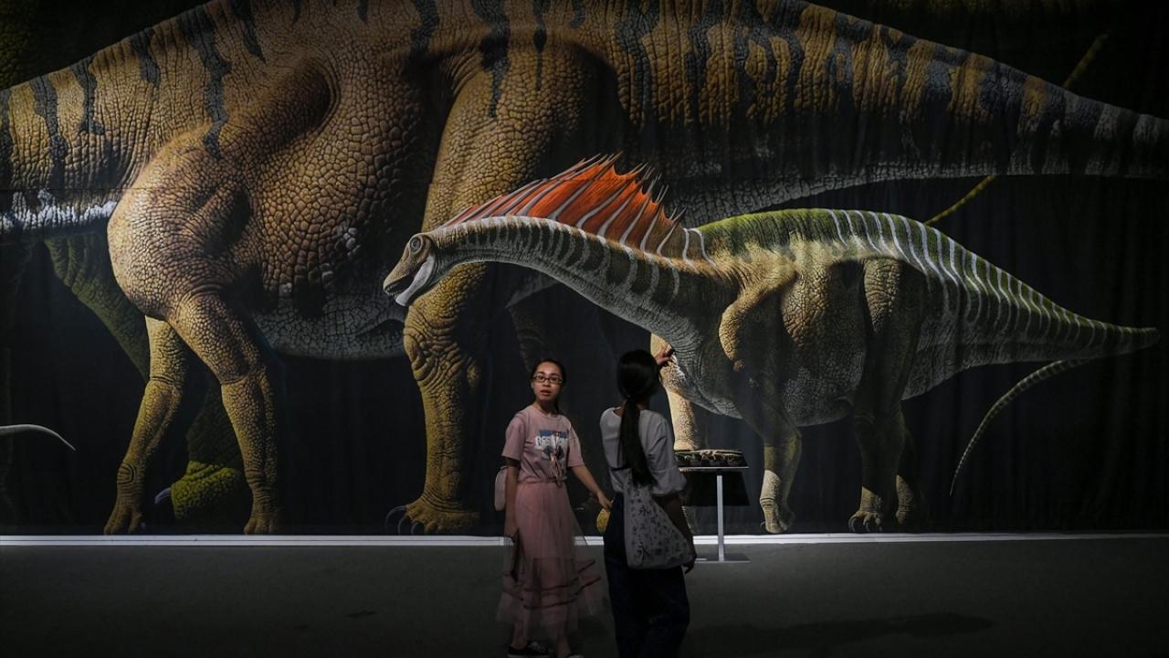 Dünyanın en büyük dinozor sergisi
