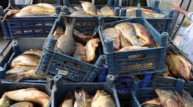 Elazığ'da kaçak avlanan bir ton balık ele geçirildi