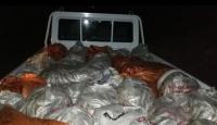 Kaçak avlanan 3 ton inci kefali ele geçirildi