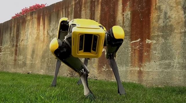 Boston Dynamicsin robot köpeği satışa sunuluyor