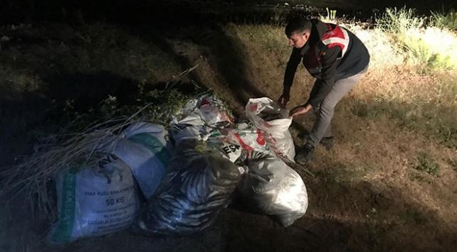 Van Gölünde kaçak avlanan 3,5 ton inci kefali ele geçirildi